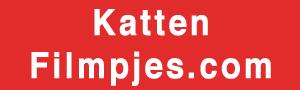 Kattenfilmpjes.com